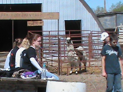 Lamar High School FFA Students at the Kiddy Barn