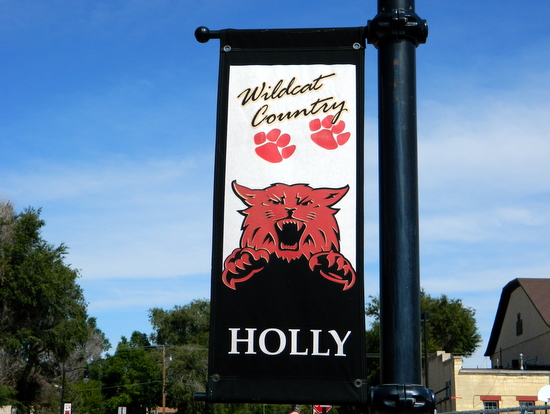 Holly Wildcat Banner