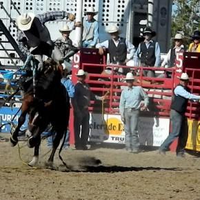 LCC Rodeo 10-1-11