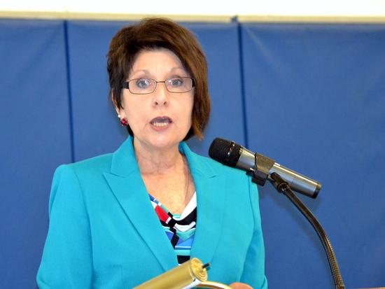 Marsha Willhite, PCDI Board President Recaps 2013 Highlights