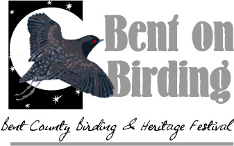 bent on Birding logo
