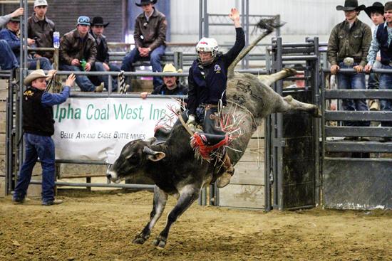 Randy Schaapman - bullriding