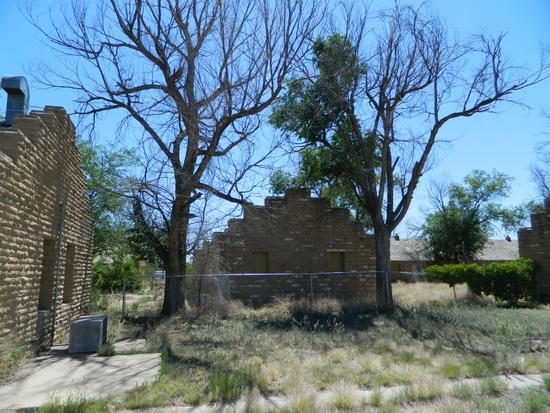Dead Trees on WPA Property