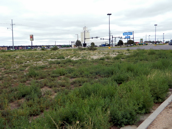 Open Lot North of Wal-Mart