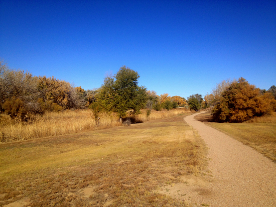 Walking Path Along Willow Creek, South of Park