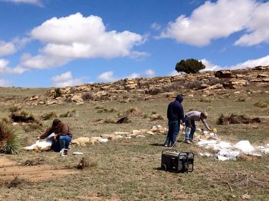 Members of LCC's Collegiate Farm Bureau are hard at work painting the rocks.
