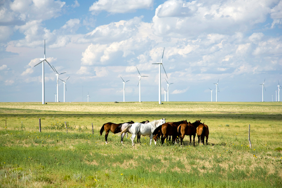 Wind-Farm-Photo-WEB