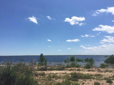 John Martin Reservoir – Courtesy Photo – Abbie Walls
