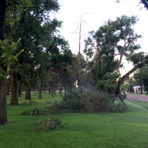 Storm Damage July 2015 (5)