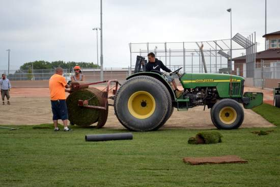 Rolling Sod Out on the Field
