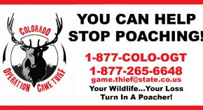 Two Deer Possibly Poached Near Hanover, Colorado