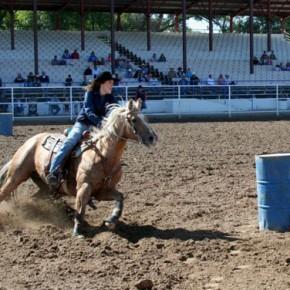 Roman Attains National Intercollegiate Rodeo Ranking